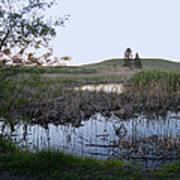 Wild Wetland Poster