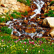 Wildflower Waterfall Poster