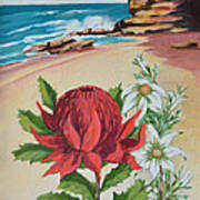 Wildflowers And Headland Poster