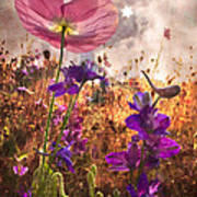 Wildflowers At Dawn Poster
