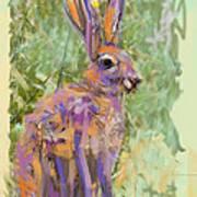 Wildlife Haas Poster