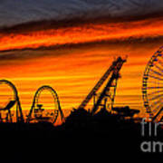 Wildwood At Dawn Poster by Mark Miller