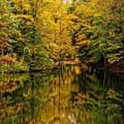 Willett Autumn Reflections Poster
