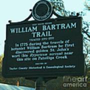 William Bartram Poster