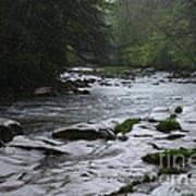 Williams River Rain Downpour Poster