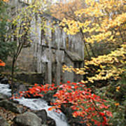 Willsons Ruins In Gatineau Park In Quebec Poster by Rob Huntley