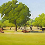 Wimberley Pastoral Poster