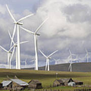 Wind Farm By Cattle Ranch In Washington State Poster