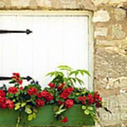 Window Box Poster