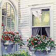 Window Boxes Poster