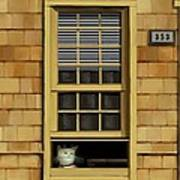 Window Cat    No.1 Poster