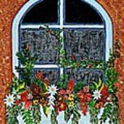 Window Flower Box On A Stucco Wall Poster