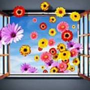 Window Of Flowers Poster