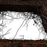 Window Through Time Poster
