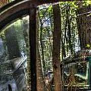 Window To A Window Via Tree Poster