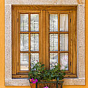 Window With Flowers Poster