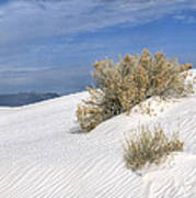 Windswept - White Sands National Monument Poster