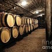 Wine Barrels In A Cellar. Cote D'or. Burgundy. France. Europe Poster