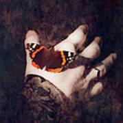 Wings Of Hope Poster