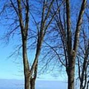 Winter At Lake Huron Poster by Rhonda Humphreys