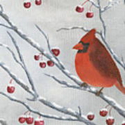 Winter Cardinal Poster by Peter Miles