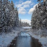 Winter Creek Poster by Fran Riley