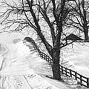 Winter Driveway Poster by Wendell Thompson