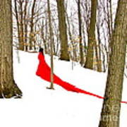 Winter Empress Poster