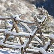 Winter Fence Line  Poster
