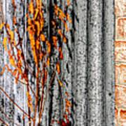 Winter Foliage Tin 13134 Poster