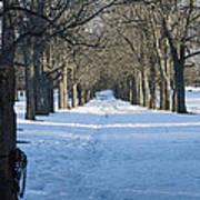 Winter Foot Prints Poster