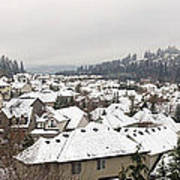Winter In Residential Suburban City Poster