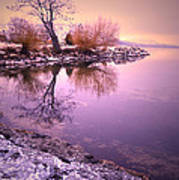 Winter Light Reflected Poster