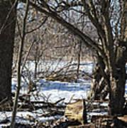 Winter Log Poster