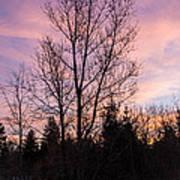 Winter Morning Sky Poster
