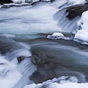 Winter On The Little Pigeon River 1 -  D008788 Poster