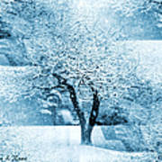 Winter Orchard Poster