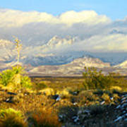 Winter In The Organ Mountains Poster