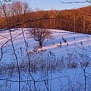 Winter Pasture Sunset Poster