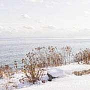 Winter Shore Of Lake Ontario Poster