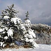 Winter Storm On Natural Bridge - D001598 Poster