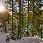 Winter Sun Flares Poster