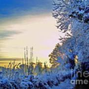 Winter Sunburst Poster