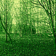 Winter Trees Green Poster