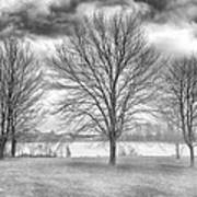 Winter Trees Poster