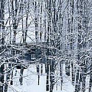 Winter Window Poster