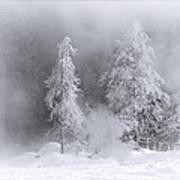 Winter Wonderland Of Yellowstone Poster