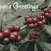 Winterberry Greetings Poster