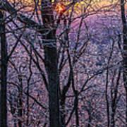 Winter's Light Poster