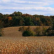 Wisconsin Fields In Late Summer Poster